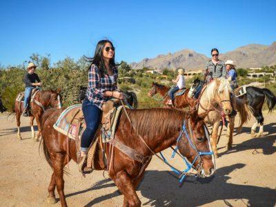 At Turları